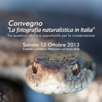 La fotografia naturalistica in Italia